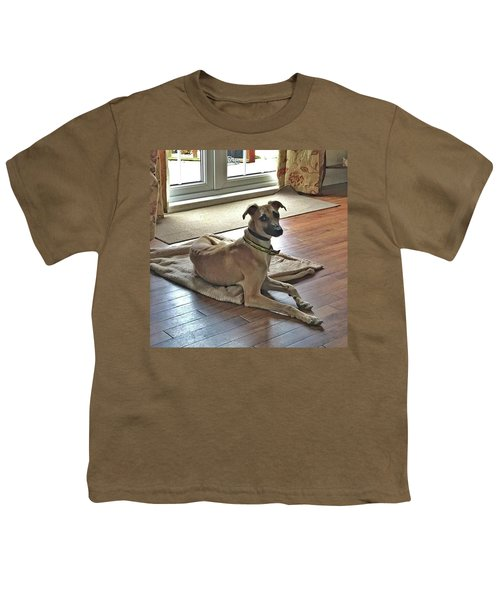 Finly - Ava The Saluki's New Companion Youth T-Shirt by John Edwards