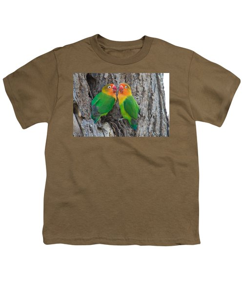 Fischers Lovebird Agapornis Fischeri Youth T-Shirt by Panoramic Images
