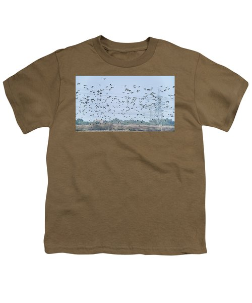 Flock Of Beautiful Migratory Lapwing Birds In Clear Winter Sky Youth T-Shirt
