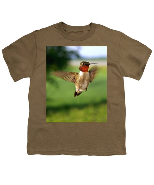 Grand Display Youth T-Shirt by Bill Pevlor
