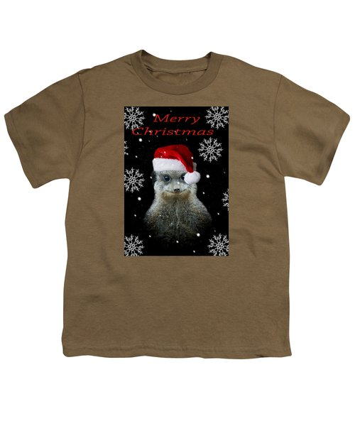 Happy Christmas Youth T-Shirt by Paul Neville