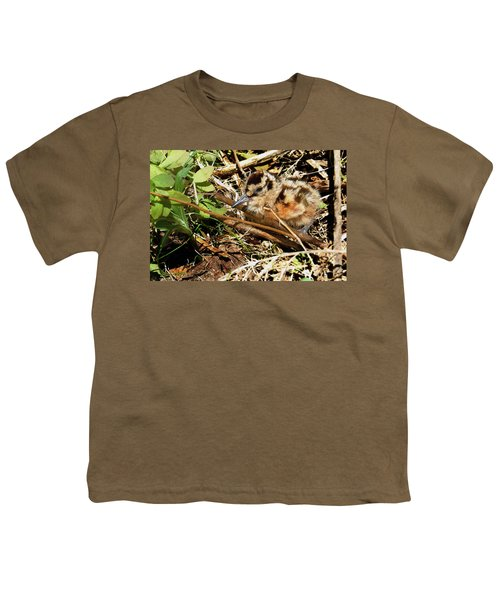 It's A Baby Woodcock Youth T-Shirt by Asbed Iskedjian