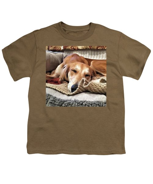 It's Been A Hard Day...  #saluki Youth T-Shirt by John Edwards