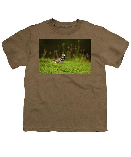 Killdeer Youth T-Shirt by Karol Livote