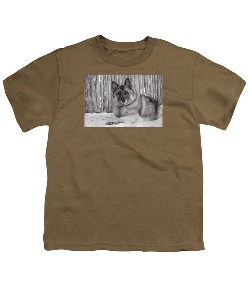 Loki By Fence Youth T-Shirt