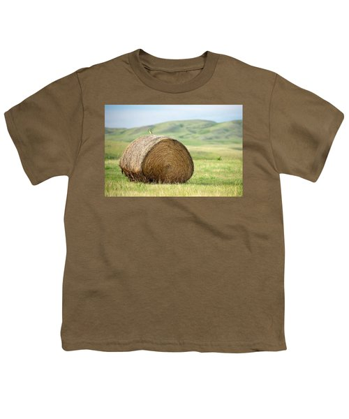 Meadowlark Heaven Youth T-Shirt by Todd Klassy
