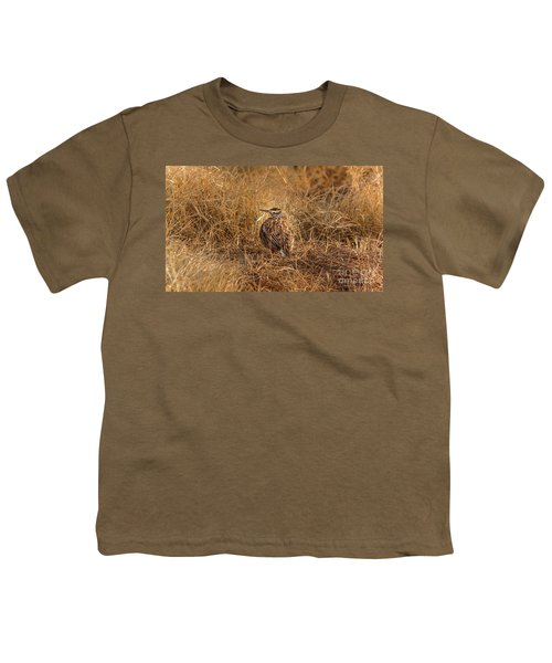 Meadowlark Hiding In Grass Youth T-Shirt by Robert Frederick
