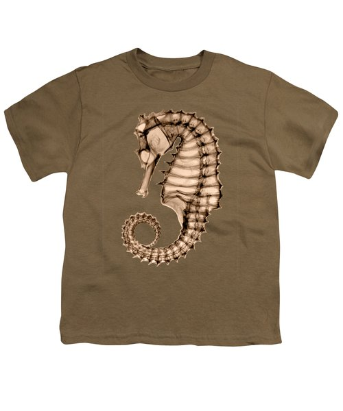 Northern Seahorse X-ray On Sepia Youth T-Shirt by George Green