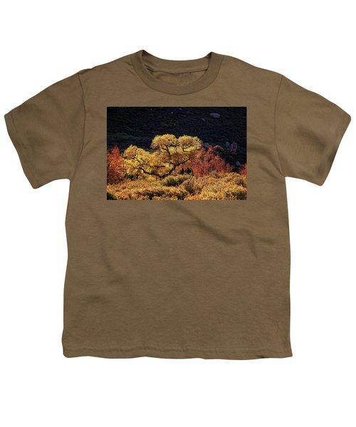 November In Arizona Youth T-Shirt