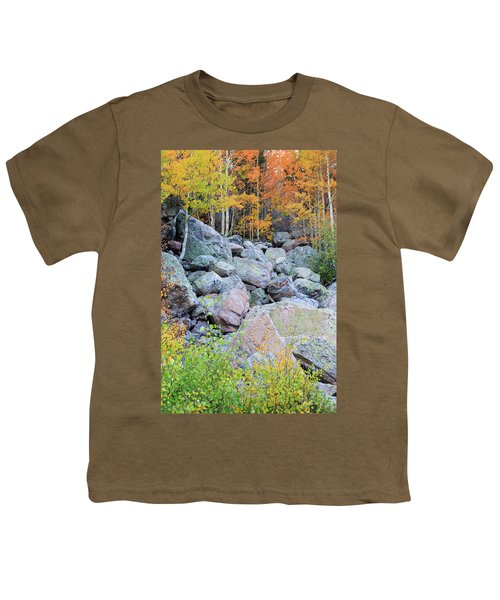 Youth T-Shirt featuring the photograph Painted Rocks by David Chandler