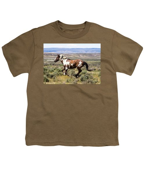 Picasso - Free As The Wind Youth T-Shirt