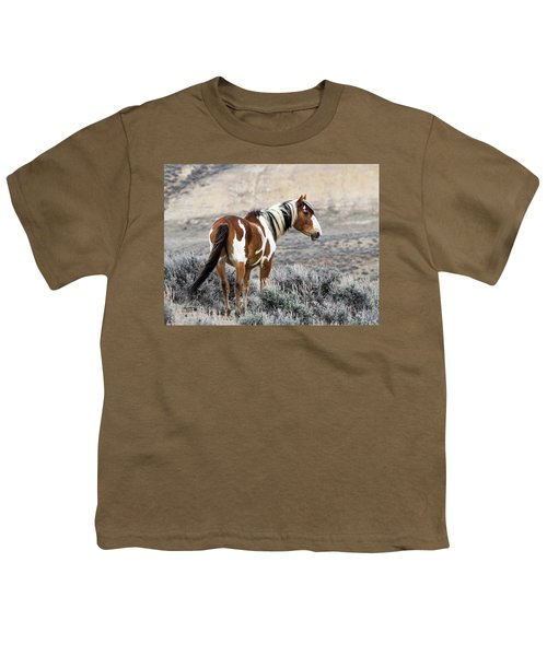 Picasso - Wild Mustang Stallion Of Sand Wash Basin Youth T-Shirt