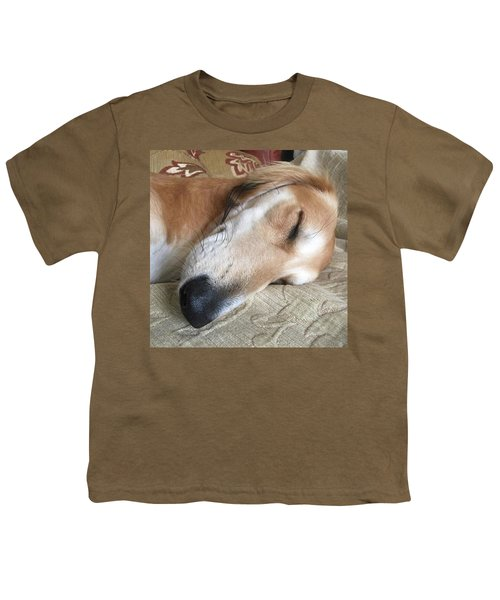 Please Be Quiet. Saluki Youth T-Shirt by John Edwards
