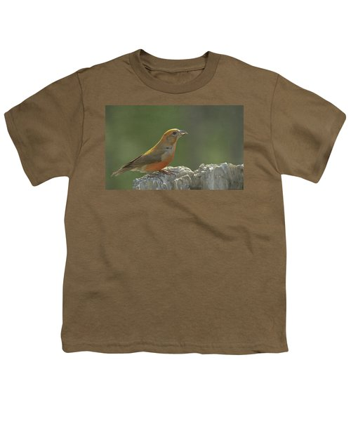 Red Crossbill Youth T-Shirt by Constance Puttkemery