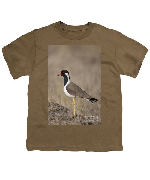 Red-wattled Lapwing Youth T-Shirt