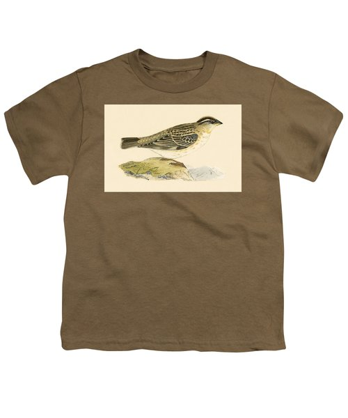 Rock Sparrow Youth T-Shirt by English School