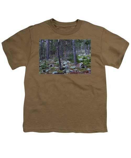 Youth T-Shirt featuring the photograph Rocky Nature Landscape by James BO Insogna