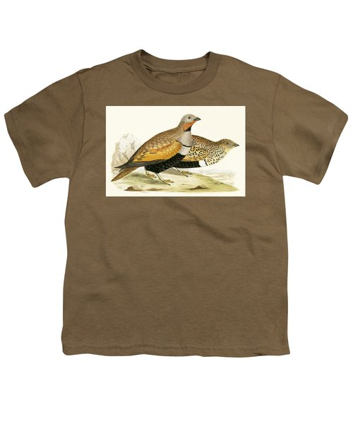 Sand Grouse Youth T-Shirt by English School