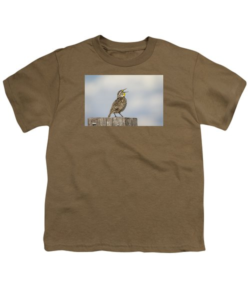 Singing A Song Youth T-Shirt by Thomas Young
