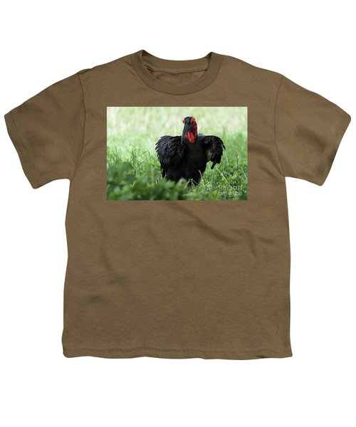 Southern Ground Hornbill Eating An Insect In Tarangire Youth T-Shirt