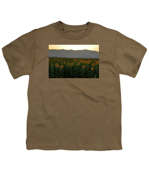 Youth T-Shirt featuring the photograph Sunflowers by Dubi Roman