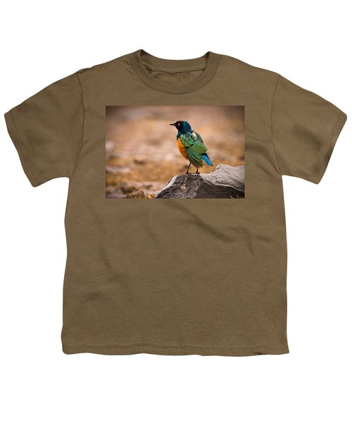 Superb Starling Youth T-Shirt by Adam Romanowicz