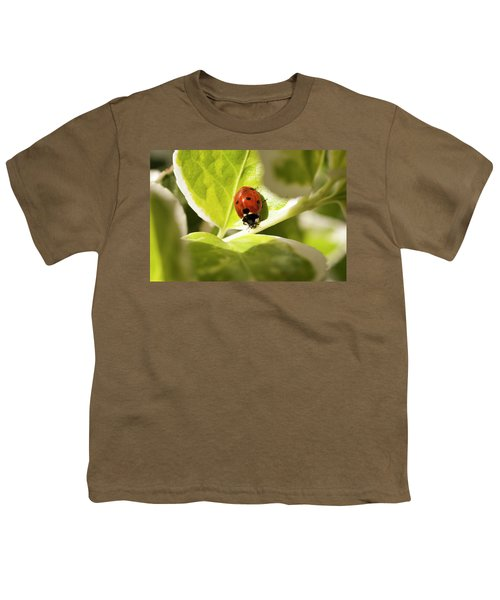 The Ladybug  Youth T-Shirt