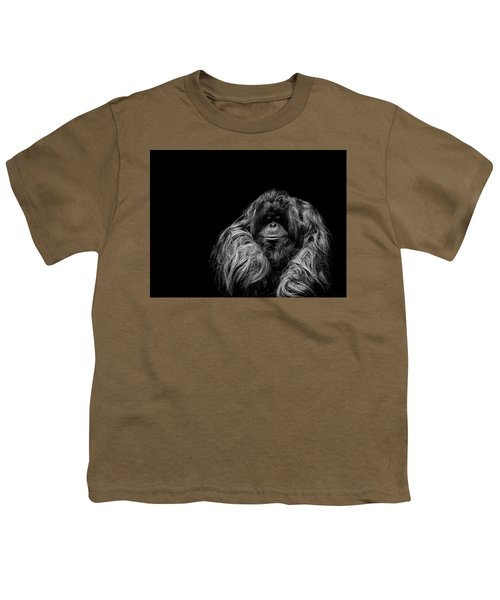 The Vigilante Youth T-Shirt by Paul Neville