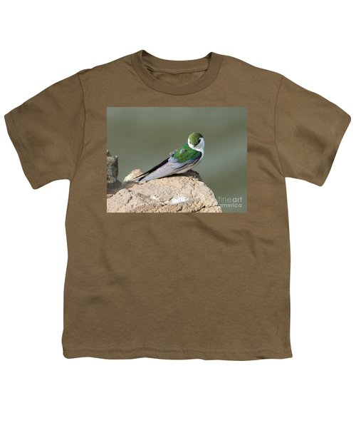 Violet-green Swallow Youth T-Shirt by Mike Dawson