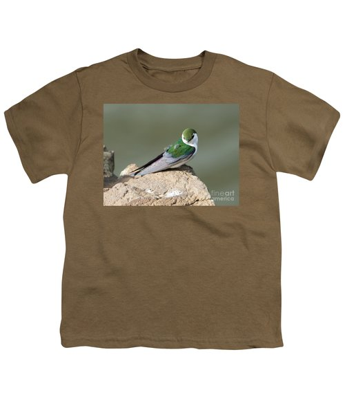 Violet-green Swallow Youth T-Shirt