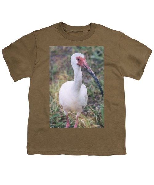 White Ibis In The Morning Light  Youth T-Shirt by Saija  Lehtonen