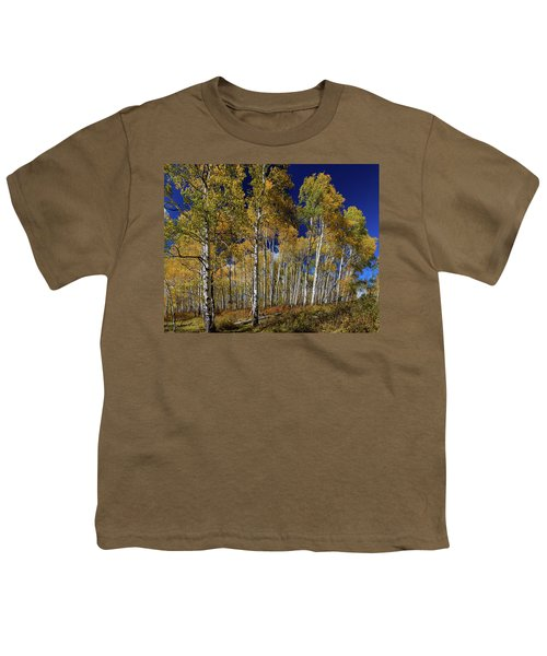 Youth T-Shirt featuring the photograph Autumn Blue Skies by James BO Insogna