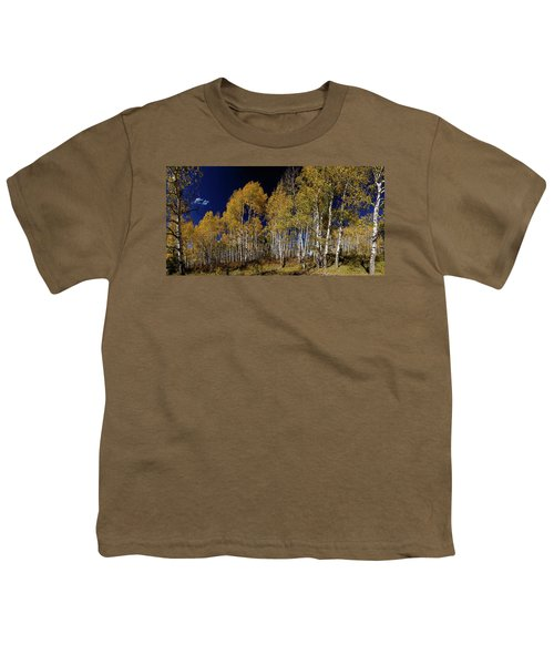 Youth T-Shirt featuring the photograph Autumn Walk In The Woods by James BO Insogna