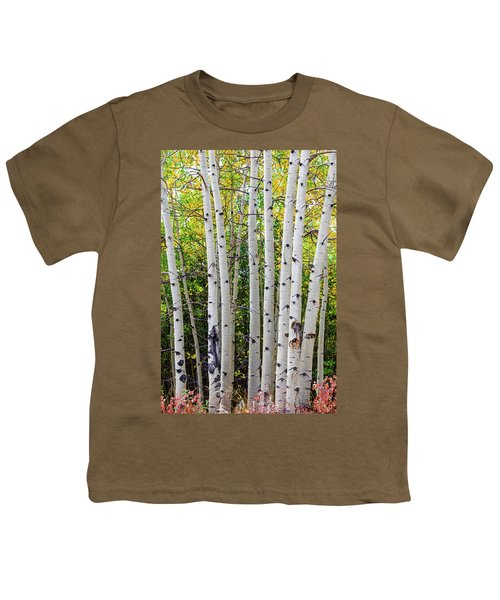 Youth T-Shirt featuring the photograph White Bark Golden Forest by James BO Insogna