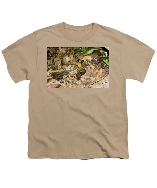 Boa Constrictor Youth T-Shirt by Gregory G. Dimijian, M.D.