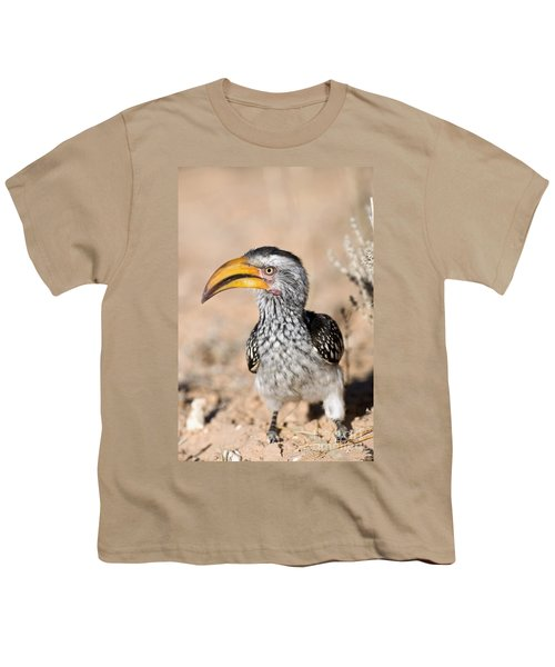 Southern Yellow-billed Hornbill Youth T-Shirt
