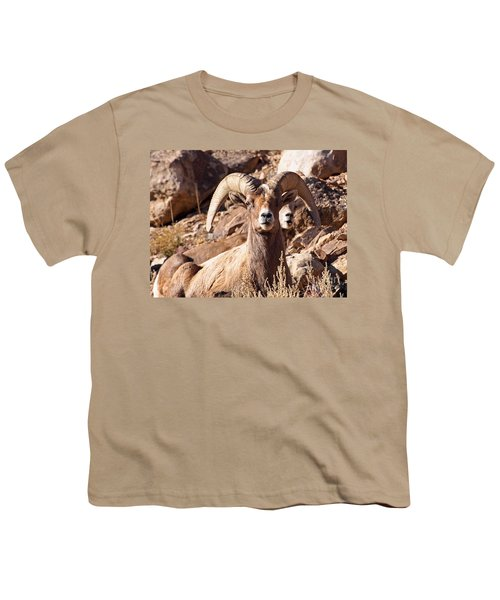 Desert Bighorn Sheep Youth T-Shirt