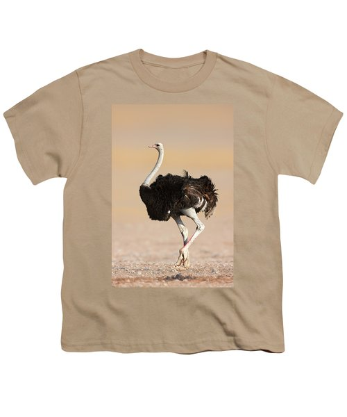 Ostrich Youth T-Shirt by Johan Swanepoel