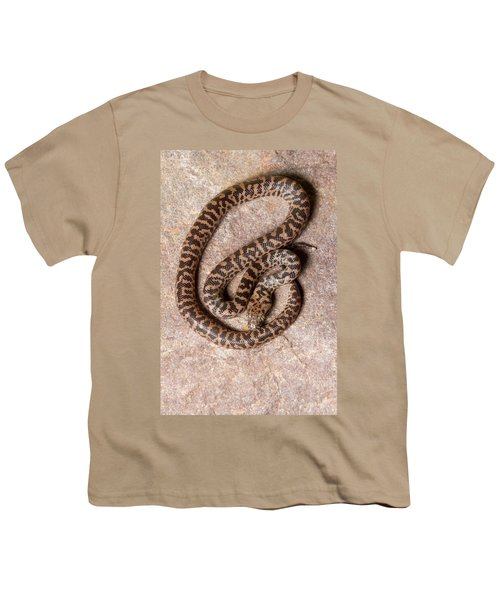Spotted Python Antaresia Maculosa Top Youth T-Shirt
