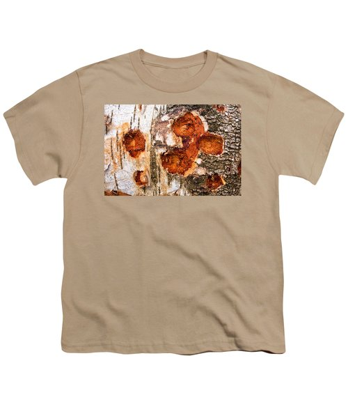Tree Trunk Closeup - Wooden Structure Youth T-Shirt