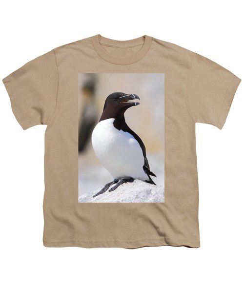 Razorbill Youth T-Shirt by Bruce J Robinson