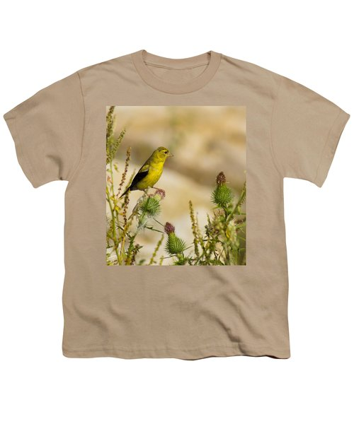 Goldfinch On Lookout Youth T-Shirt by Bill Pevlor