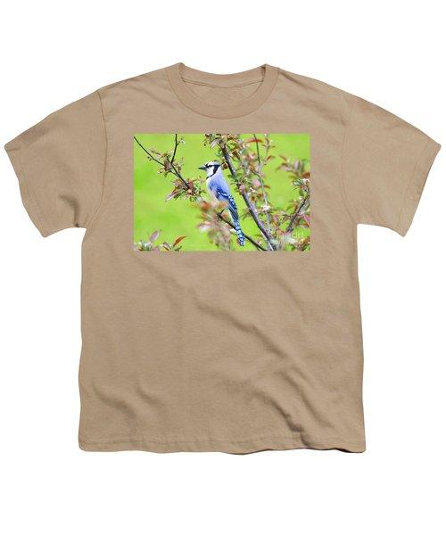 Blue Jay Youth T-Shirt