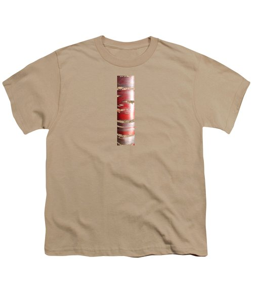 Youth T-Shirt featuring the photograph Bouleau Rouge by Marc Philippe Joly
