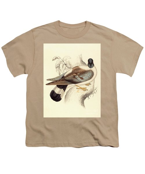 Columba Leuconota, Snow Pigeon Youth T-Shirt by Elizabeth Gould