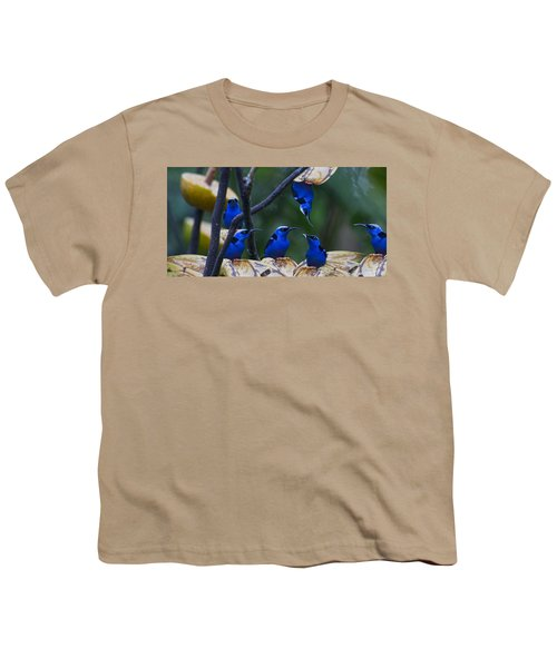 Honeycreeper Youth T-Shirt