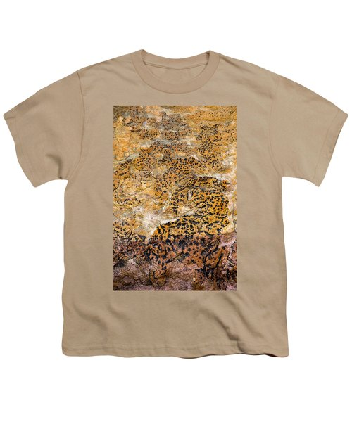 Youth T-Shirt featuring the photograph Lichen Abstract, Bhimbetka, 2016 by Hitendra SINKAR