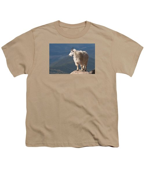 Youth T-Shirt featuring the photograph Mountain Goat by Gary Lengyel