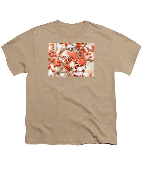 Pine Grosbeak Youth T-Shirt