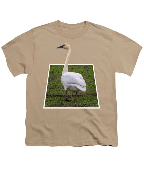 Portrait Of A Swan Out Of Frame Youth T-Shirt